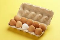 Јајца во картонска кутија